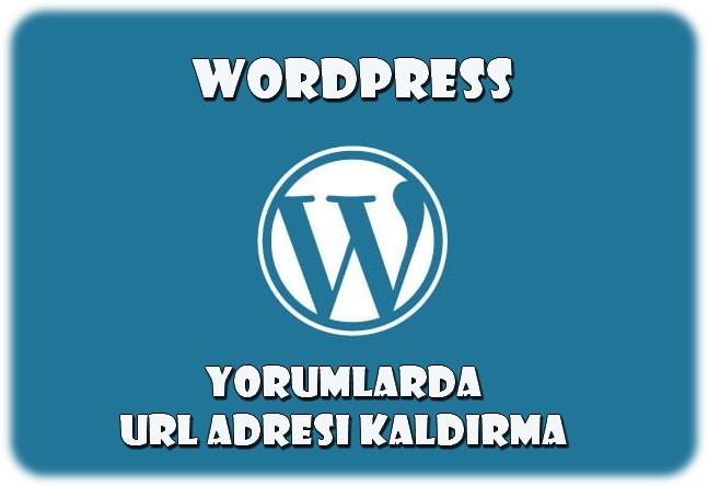 WordPress Yorum Alanından URL Alanını Silmek